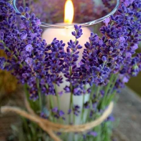 شمع افراح